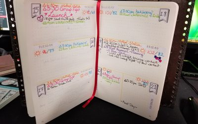 July 15 – Plan with Me!